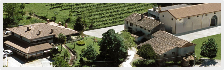 Air view of the winery