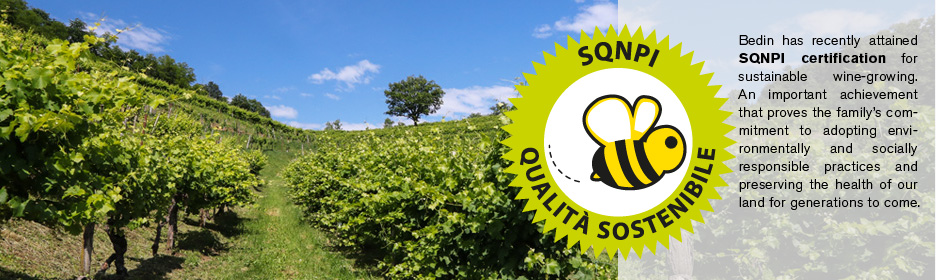 Bedin SQNPI certification for sustainable wine-growing